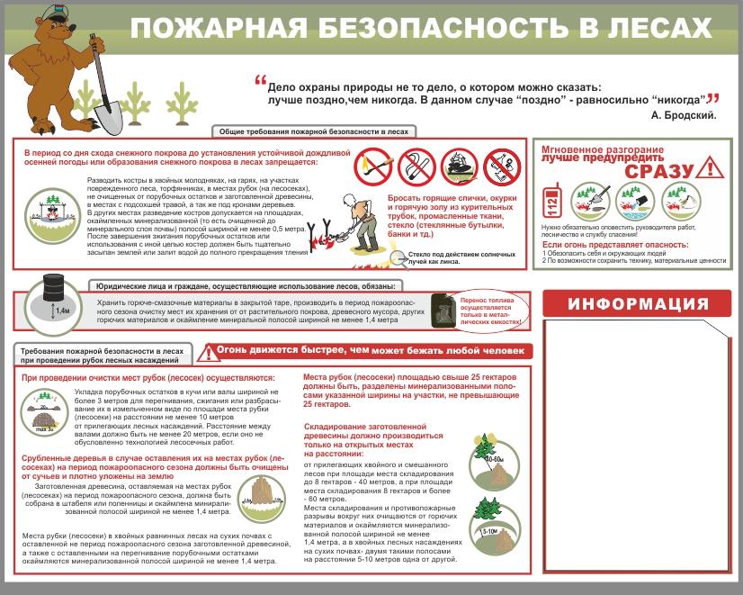 инструкция по пожарной безопасности в лесных зонах