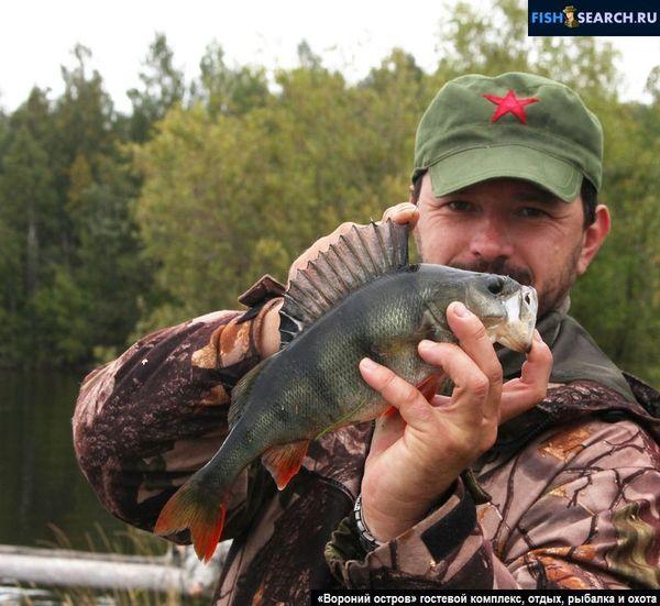 Фотокаталог Онего, второе по величине озеро Европы, Отдых, рыбалка и охота