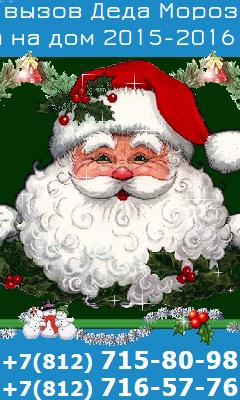 Дед Мороз. Невские праздники